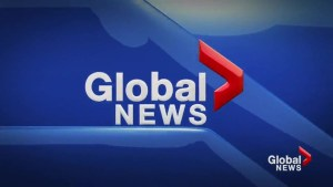 Global News at 5 Lethbridge: May 21